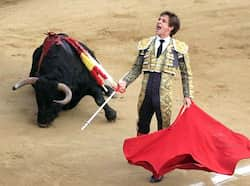 "Spanish bullfighter Julian Lopez ""El Juli"" gestures to the audience after killing a bull during a bullfighting festival at Canaveralejo bullring in Cali. (Reuters) Dec 29: day in pics"