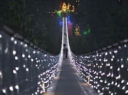 Visitors walk across the Capilano Suspension Bridge decorated in Christmas lights in North Vancouver, British Columbia. Reuters Photo Nov 11: Day in pics