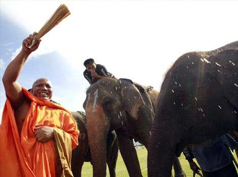 A Buddhist monk blesses elephants during the opening the the 11th King