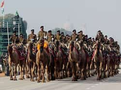 A camel-mounted BSF soldiers rehearse for the Republic Day parade at Rajpath in New Delhi. (PTI Photo) Republic Day rehearsals in full swing