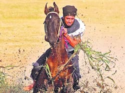 A horse rider after finishing the race at Kila Raipur games in Ludhiana. Gaurav Bajaj/HT Show of strength
