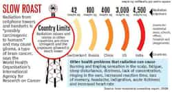 the dangers of electromagnetic fields essay