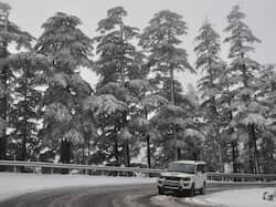 http://www.hindustantimes.com/Images/popup/2014/12/Snowfall7_compressed.jpg