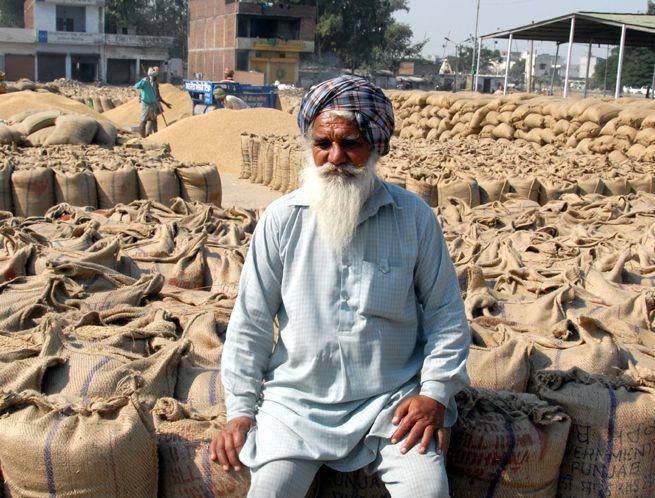 https://www.hindustantimes.com/Images/popup/2014/12/grainmarketinlud_compressed.jpg