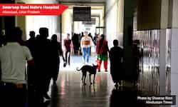 http://www.hindustantimes.com/Images/popup/2014/12/hospital1.jpg