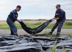 http://www.hindustantimes.com/Images/popup/2014/7/MH17new3.jpg