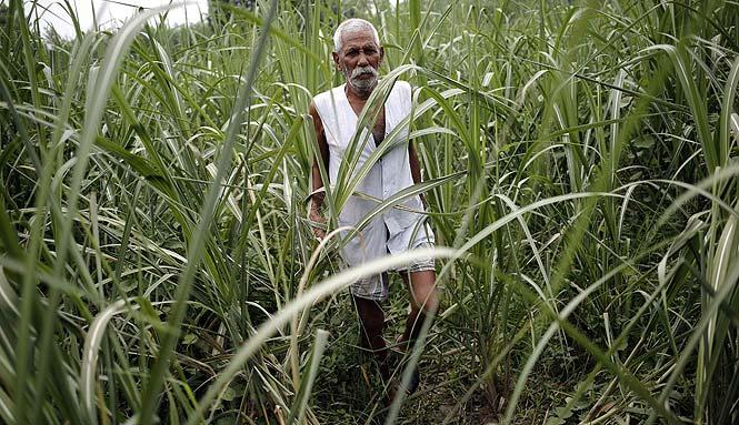 http://www.hindustantimes.com/Images/popup/2014/7/farmer1.jpg