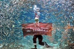 "A South Korean diver wearing a Santa Claus outfit displays a banner reading ""Merry Christmas"" during an event at the Coex Aquarium in Seoul on December 7, 2011. Photo: AFP Santa Claus around the world"