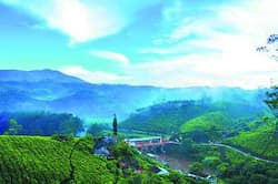 Tea gardens dominate the landscape of Munnar and the Periyar river snakes through. Photo by Nitin Chaudhury, see story kerala